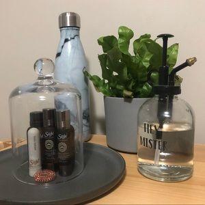 CRATE & BARREL glass cloche